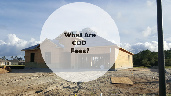 What are CDD fees?